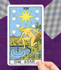 The Star Card
