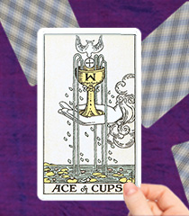 List of Minor Arcana Tarot Cards & Their Meanings | Kasamba
